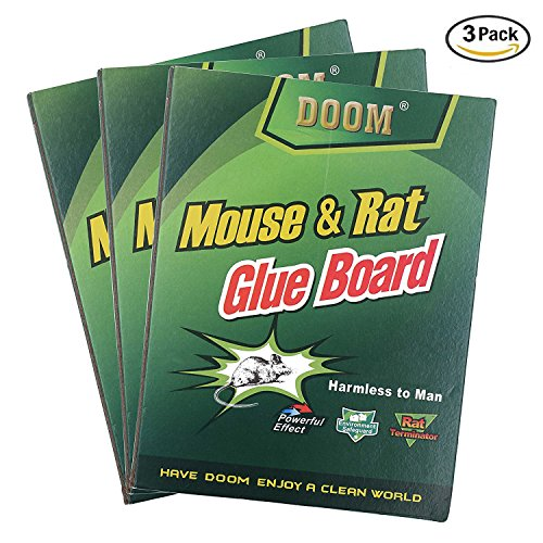 Replacement Glue Pads - 2