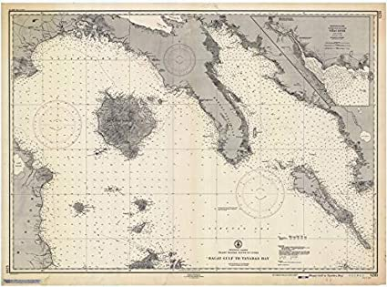 Amazoncom Vintography Reprinted 8 X 12 Nautical Map Of Ragay Gulf - Us-coast-and-geodetic-survey-maps