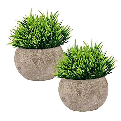 The Bloom Times 2 Pcs Fake Plant for Bathroom/Home Office Decor, Small Artificial Faux Greenery for House Decorations (Potted Plants) -