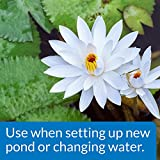 API POND CHLORINE & HEAVY METAL NEUTRALIZER Pond