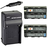 DSTE® 2x NP-F550 Battery + DC01 Travel and Car Charger Adapter for Sony CCD-RV100 CCD-RV200 CCD-SC5 CCD-SC9 CCD-TR1 CCD-TR215 CCD-TR940 CCD-TR917 Camera CN-126 CN-160 CN-216 CN-304 YN 300 VL600 LED Video Light as NP-F330 NP-F530 NP-F570