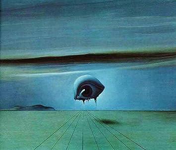 JH Lacrocon El Ojo de Salvador Dali - 120X100 cm Pinturas Abstracto a Mano Reproducción Sobre Lienzo Enrollado Decoración Pared para Salón: Amazon.es: Hogar