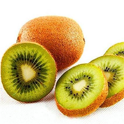 KINGDUO 100Pcs Tailandia Mini Kiwi Frutas Semillas Flores Jardín Comestibles Delicioso Bonsái Plantación De Fruta