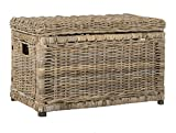 "happimess Elijah 30"" Wicker Storage Trunk, Natural"