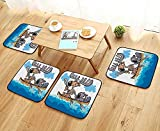 Leighhome Elastic Cushions Chairs Animals Boat Beaver Friend Canoe River Fun Native Characters Kids Cartoon Blue White for Living Rooms W29.5 x L29.5/4PCS Set