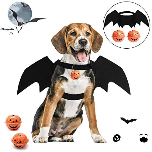 Halloween Costumes For Two Dogs (B bangcool Bat Wings for Dogs, Pet Halloween Bat Costume Adjustable Black Dragon Wings with 2 Pumpkin)