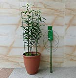One Pack 18 Inch Heavy Duty Tomato and Plant Support Cage Plant-Staking System
