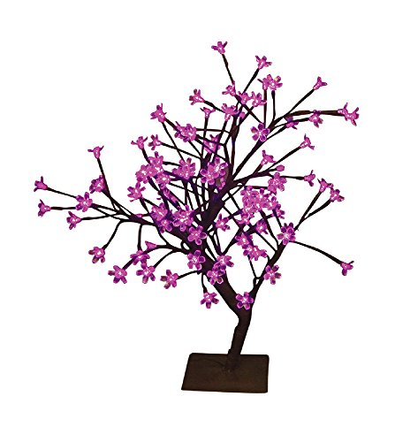 Hi-Line Gift Ltd Floral Lights LED Bonsai Tree, 208-Inch,...