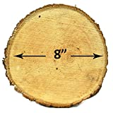 """Natural UNTREATED Basswood SLABS 8"""" Diameter (Large) - Excellent for Weddings, centerpieces, DIY Projects, Table Chargers or Decoration! by Woodlandia (Set of Four SLABS)"""