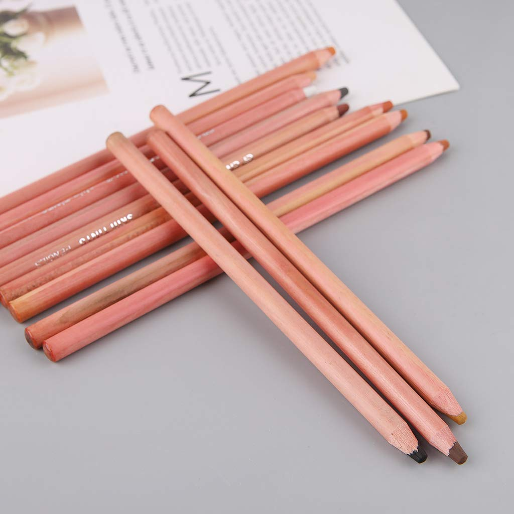 Pencils Soft Pastel Artist Crayon Charcoal for Sketching Wooden Drawing Supplies 12Pcs//Set