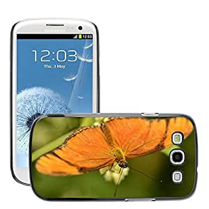 Super Stella Slim PC Hard Case Cover Skin Armor Shell Protection // M00149688 Butterfly Insects Butterflies Bugs // Samsung Galaxy S3 S III SIII i9300