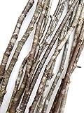 #8: Decorative Wood Branches Sticks Vase Fill Art Craft Wedding Centerpiece 15 Pcs. 22