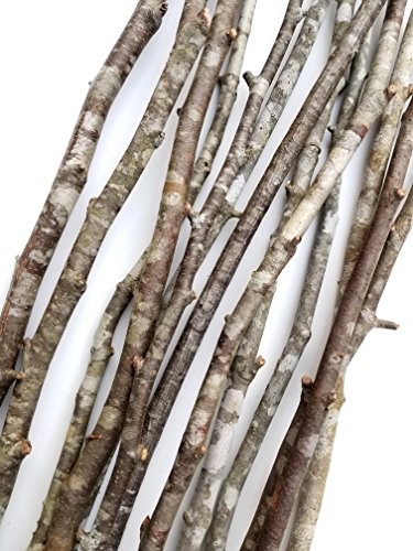 Decorative Wood Branches Sticks Vase Fill Art Craft Wedding Centerpiece 15 Pcs. 22