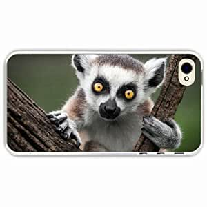 iPhone 4 4S Black Hardshell Case ring tailed lemur Transparent Desin Images Protector Back Cover