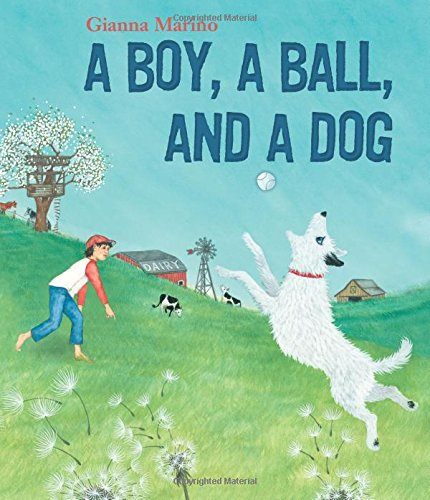 Book Cover: A Boy, a Ball, and a Dog