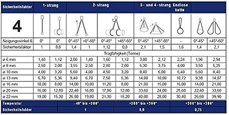 Gabelkopfhaken CSH Verscheidene L/änge G10 BLP 2-strang Anschlagkette 6mm//16mm Verk/ürzung
