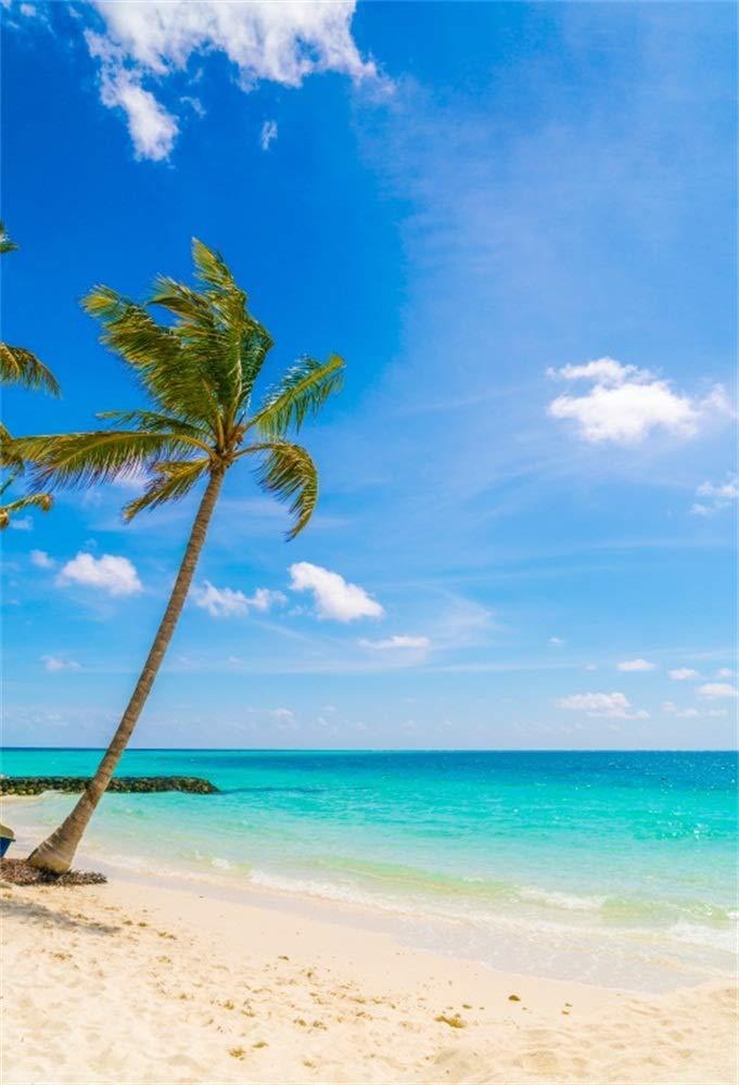 LFEEY 8 x 10フィート 海辺風 風 ビーチ 景 背景 ブルー 空 ウェディング 誕生日 パーティー イベント 写真 撮影 装飾 壁紙 ビデオ ドレープ トロピカル パームツリー 写真 背景 フォトスタジオ 小道具   B07G637FD6