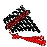 L\'MS Panflute Plastic Panpipes Percussion Woodwind Instrument (Plastic-Black)
