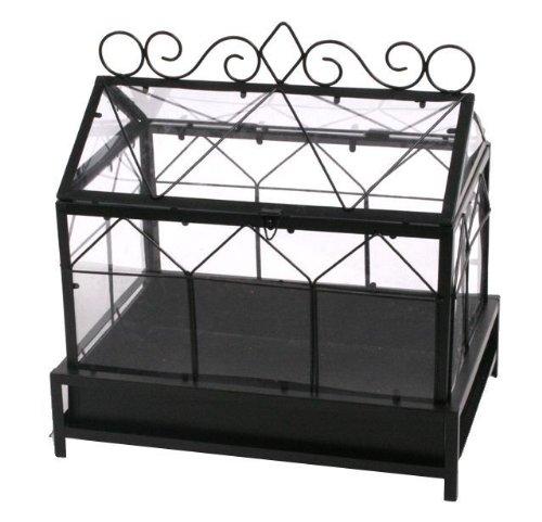 Mini Gewachshaus Fur Zimmerpflanzen Oder Kakteen Amazon De Garten