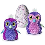 Hatchimals Glittering Garden - Hatching Egg – Magical Interactive Creature – Sparkly Penguala with Soft Shimmering Fur and Twinkling Wings– Purple/Magenta by Spin Master