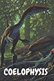 Coelophysis: Dinozaur Notebook for Kids and for Adults: Notebook for Coloring Drawing and Writing (110 Pages, Blank, 6 x 9) (Dinozaur Notebooks) paper ... and ideas for ... notepad for women and kids