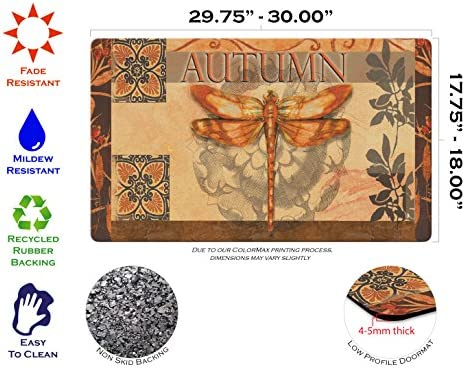 Toland Home Garden Autumn Glow 18 x 30 Inch Decorative Fall Floor Mat Dragonfly Doormat