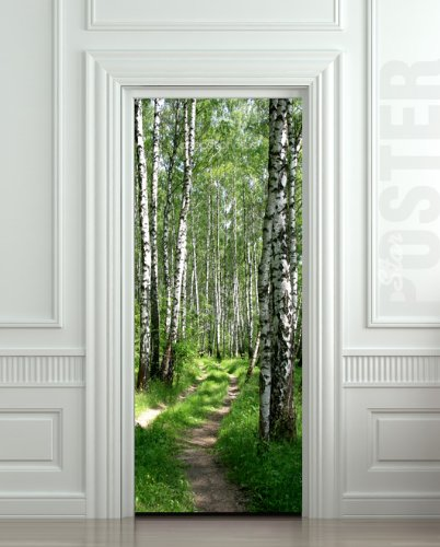 Wall Door STICKER Birch, Forest, Road, Way, Passageway, , Mural,