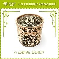 Nature Nerds: hisopos de algodón (200 piezas) hechos de bambú y ...
