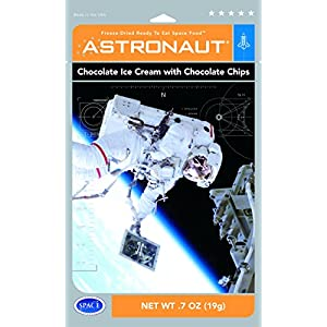 Astronaut Freeze Dried Chocolate Ice Cream with Chocolate Chips, One Serving Pouch