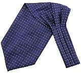 Driew Men Silk Cravat Ascot Ti