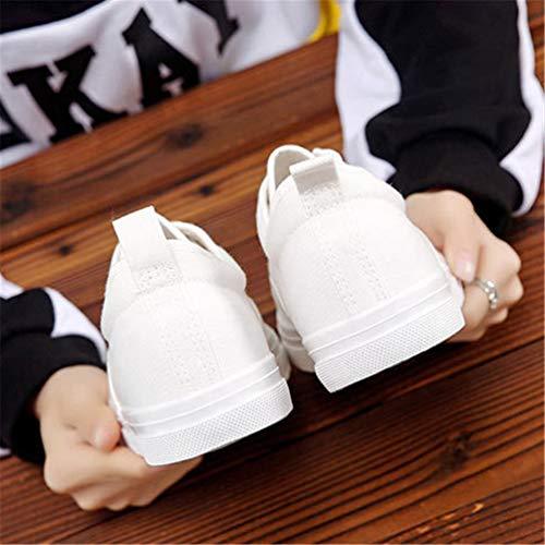 Blanco Aire Mens Al Calzado Zapatos Casuales Caminando De Moda Otoño Zapatillas Libre Encaje Lona Running g6qrg8