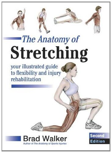 The Anatomy Of Stretching  Your Illustrated Guide To Flexibility And Injury Rehabilitation