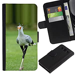 KingStore / Leather Etui en cuir / Samsung Galaxy S3 III I9300 / Printemps Roadrunner Nature