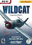 Wildcat: Legends of Flight - PC - Best Reviews Guide