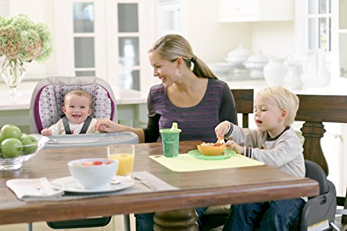 Graco Blossom 4-in-1 Convertible High Chair Seating System, Nyssa by Graco (Image #10)