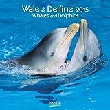 Wale und Delfine 2015: Broschürenkalender mit Ferienterminen
