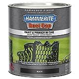 Masterchem Industries 43140 Hammered Paint, Black