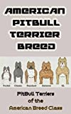 American Pit Bull Terrier Breed: Pit Bull Terriers of the American Breed Class