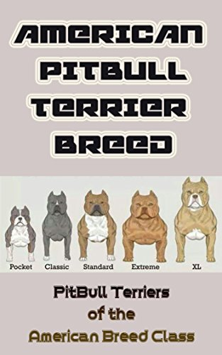 (American Pit Bull Terrier Breed: Pit Bull Terriers of the American Breed Class)