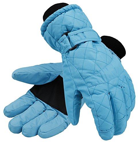 Livingston Womens Thinsulate Lining Sports Waterproof Ski/Snowboarding Gloves