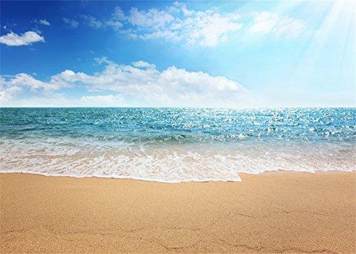Leowefowa 12X8FT Sand Beach Backdrop Seaside Waves Blue Sky White Cloud Sunshine Backdrops for Photography Kids Adults Summer Holiday Vinyl Photo Background Studio Props