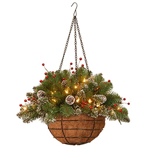 National Tree 20 Inch Glittery Mountain Spruce Hanging Basket with Red Berries, White Tipped Cones and 35 Battery Operated Warm White LED Lights (GLM1-300-20H-B1) (Baskets Lighted Hanging)