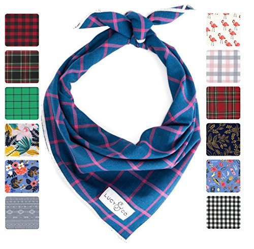 Dog Bandana - Lucy & Co. Dog Bandana - Small Large Designer Puppy Clothes - Bandannas for Boy and Girl Dogs - Accessories Fit Small Medium Large Dogs (Maxwell, Large)