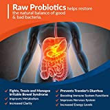 Organic Probiotics 100 Billion CFU, Dr. Approved