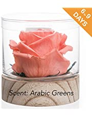 Home Scent 12oz Real Fragrance Flower Lasts 4 Month Abilities Similar to Scented Candle, Wax and Aroma Diffuser Gift