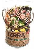 Terra Tropical Fish World