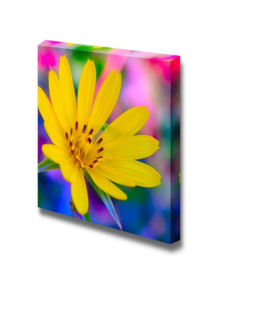 Wall26 - Canvas Prints Wall Art - Flower on a Colorful Background ...