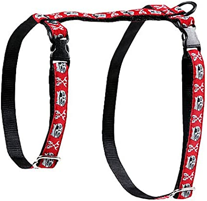 RC Pet Products Kitty Cat Leash 1//2-Inch by 6-Feet Nirvana