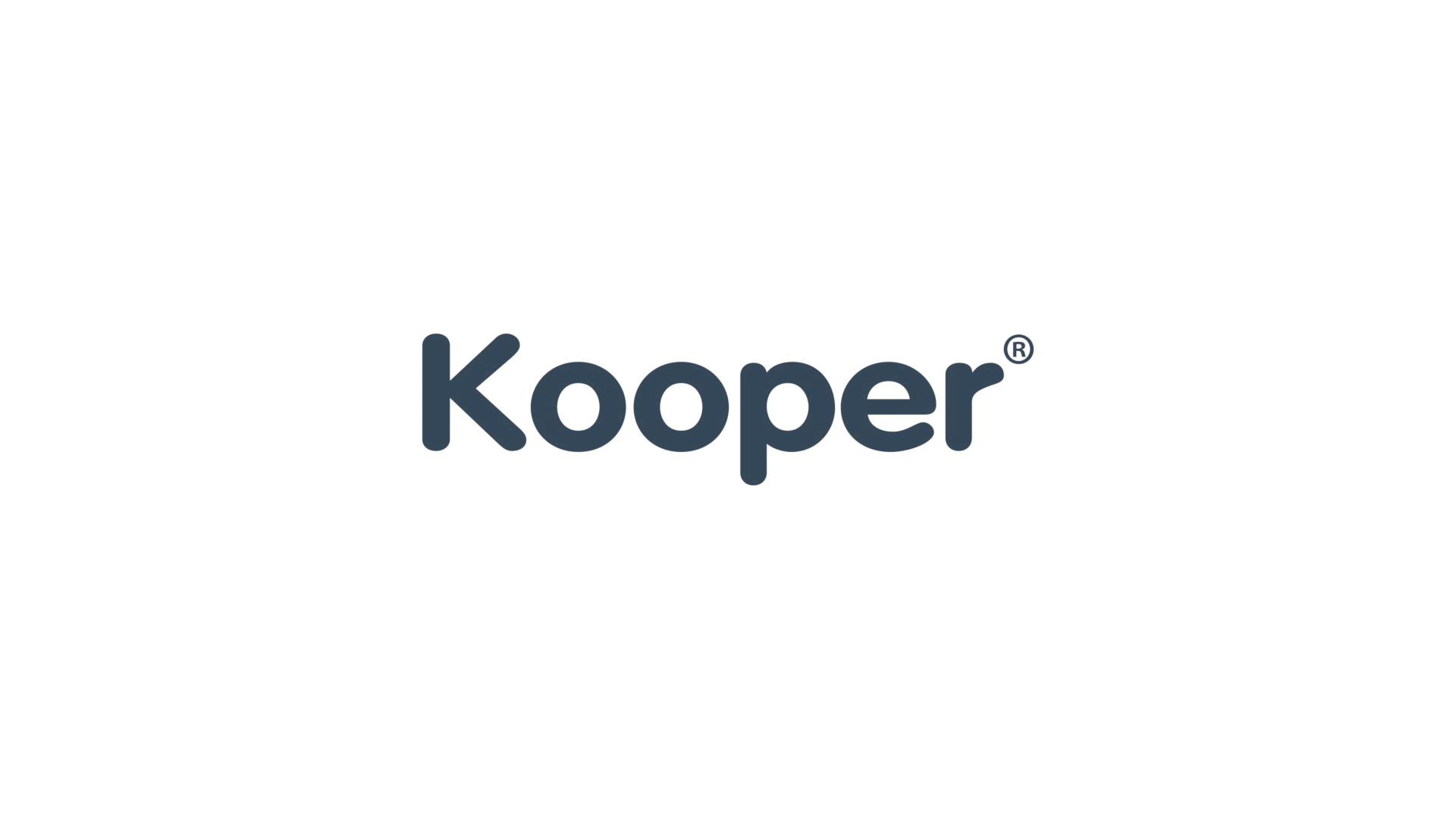 Kooper 2175884 sbattitore Elettrico 150 W Rosa
