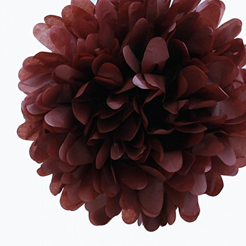 Dress My Cupcake 5-Inch Chocolate Brown Tissue Paper Pom Poms, Childrens Arts and Craft Supplies/Good for Schools and Churches, Set of 8